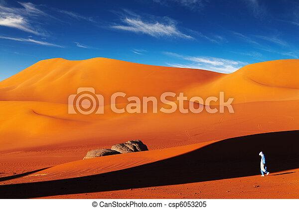 desierto de Sahara, Algeria - csp6053205