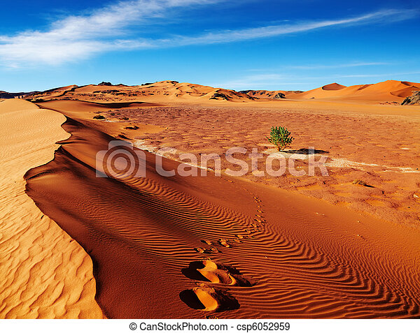 desierto de Sahara, Algeria - csp6052959