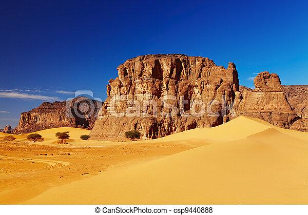 desierto de Sahara, Algeria - csp9440888