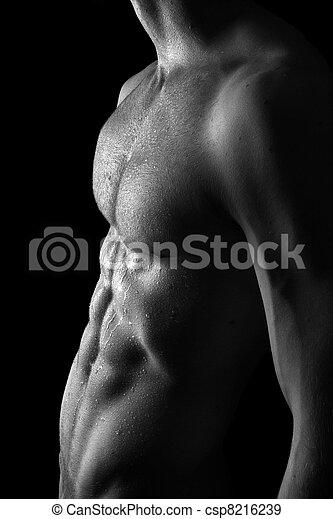 desnudo, muscular, hombre - csp8216239