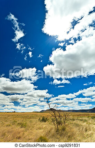Desolate landscape with beautiful cloudscape - csp9291831