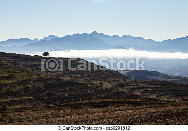 Desolate mountain landscape with tree - csp9291812
