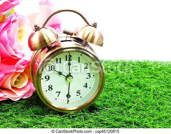 Reloj de alarma - csp45120815