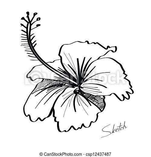 Dessine Croquis Fleur Main Dessine Croquis Fleur Resume Main