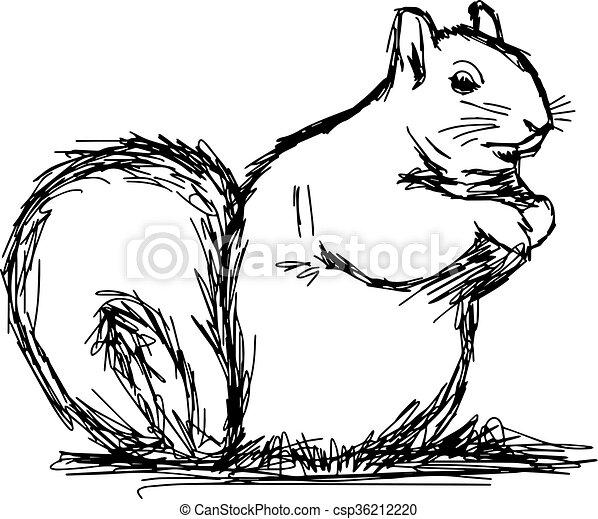 Dessiner cureuil isol illustration main - Ecureuil a dessiner ...