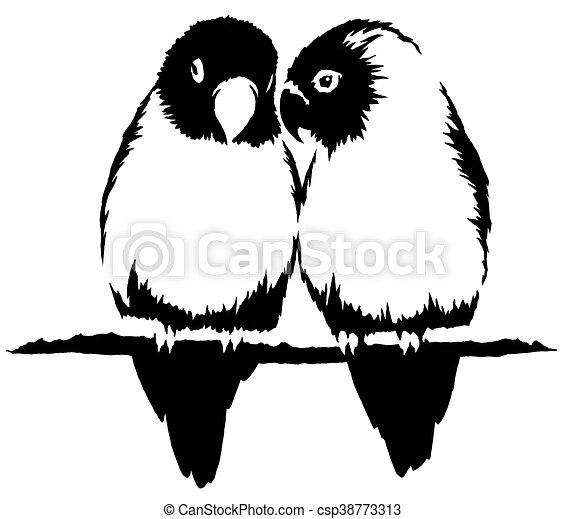 Dessiner Linéaire Perroquet Illustration Peinture Noir Oiseau Blanc