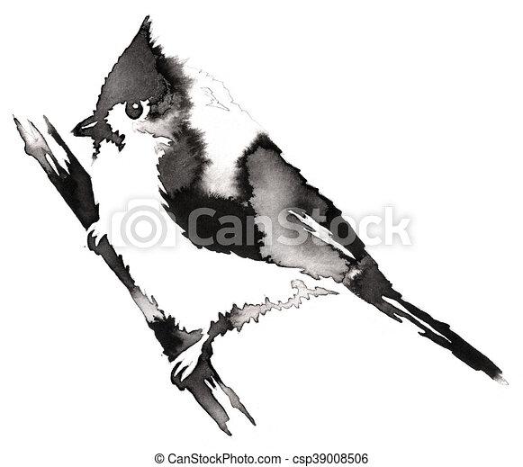 Dessiner Monochrome Illustration Eau Encre Noire Cardinal Blanc Peinture Oiseau