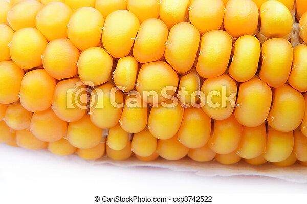 detail of a corn - csp3742522