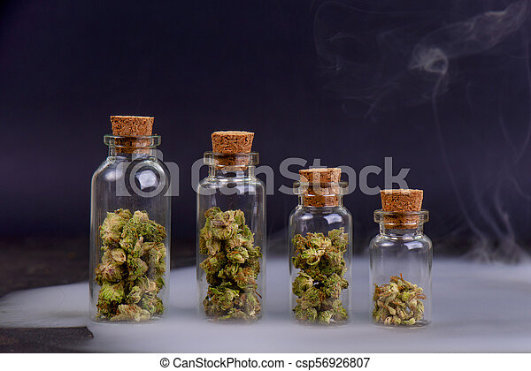 Detail of assorted jars with cannabis calyxes (sour tangie strain) isolated  on black