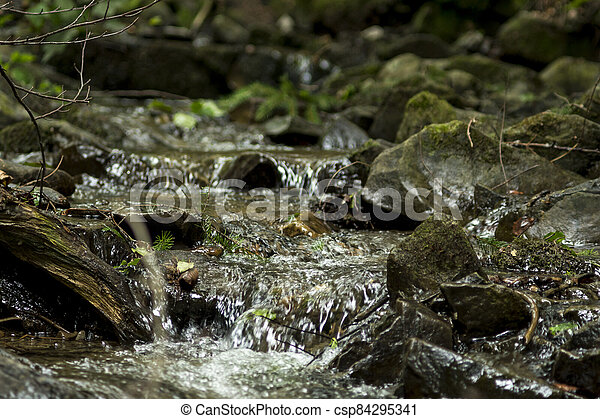 detail of cascades on a stream - csp84295341