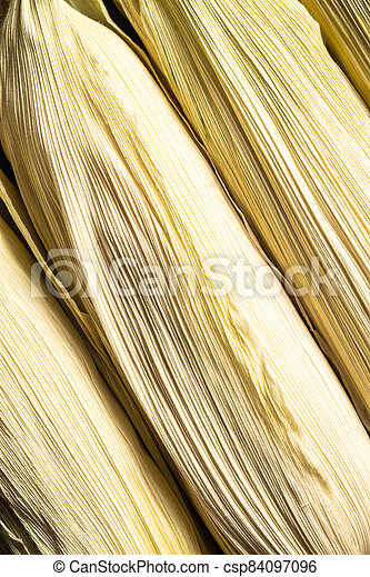 Detail of corn cobs. - csp84097096