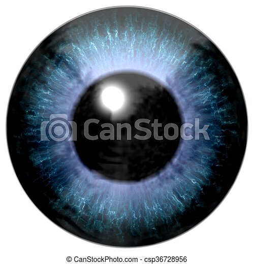 Detail of eye with blue colored iris and black pupil - csp36728956