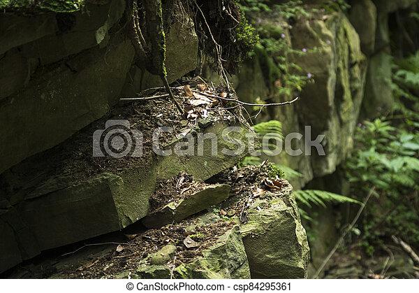 detail of sandstone rocks - csp84295361
