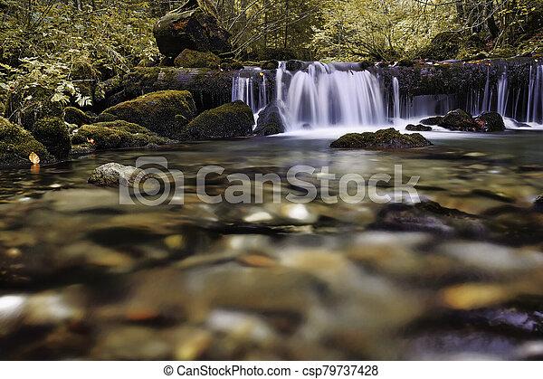 detail on a mountain stream - csp79737428