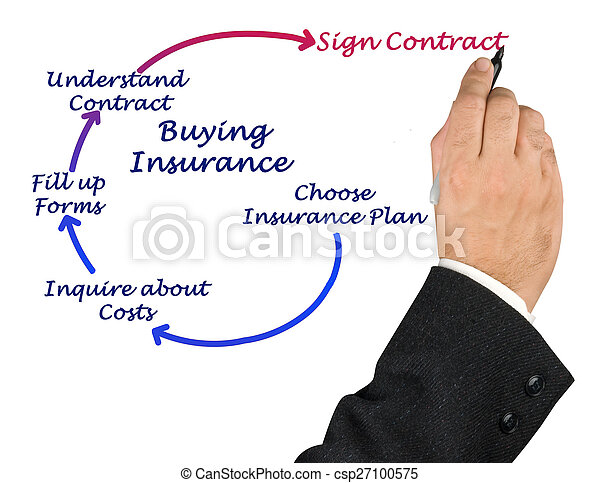 Diagram of Buying Insurance - csp27100575