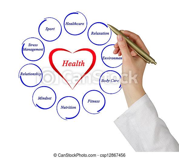 Diagram of health - csp12867456