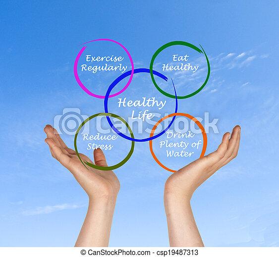 Diagram of healthy life - csp19487313