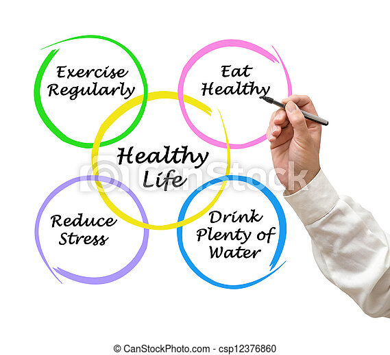 Diagram of healthy life - csp12376860