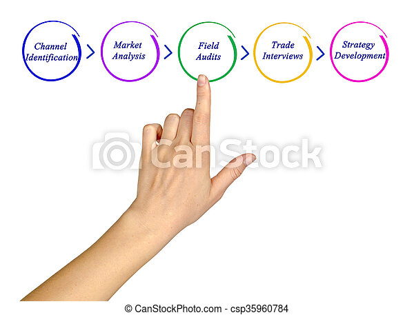 Diagram of process - csp35960784