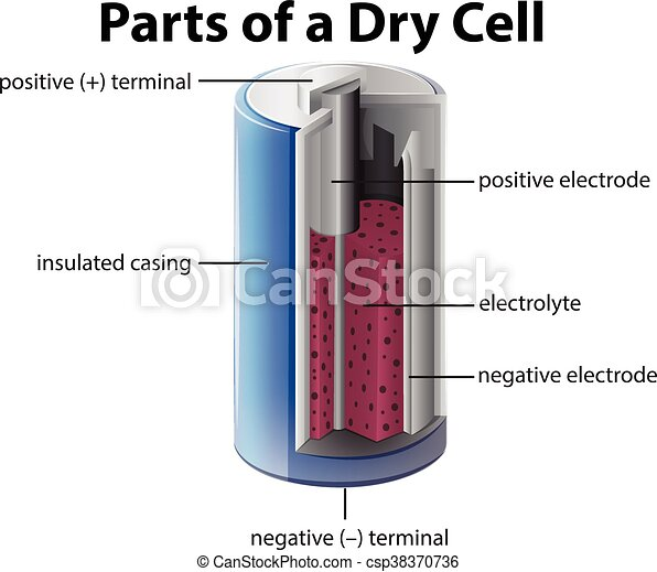 Diagram Showing Inside Of Battery Illustration Vectors Search How Does A Rechargeable Battery Work What Is A Battery Cell What Does A Battery Do In A Circuit