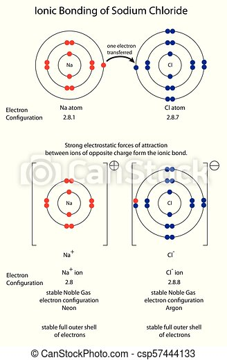 diagram to show ionic bonding in sodium chloride. Black Bedroom Furniture Sets. Home Design Ideas