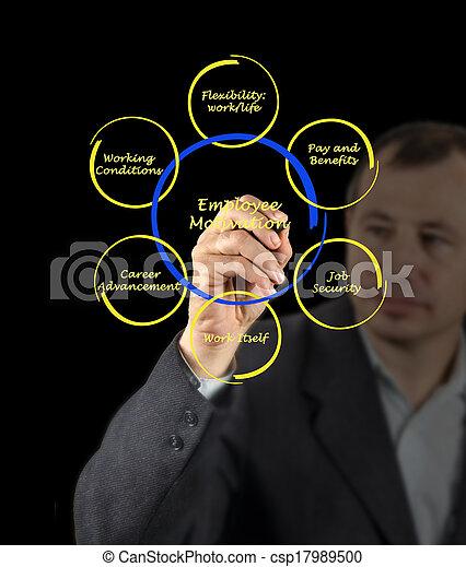 diagrama, empregado, motivação - csp17989500
