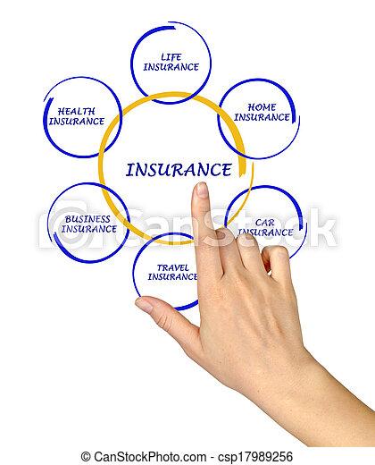 Mujer presentando el diagrama del seguro - csp17989256