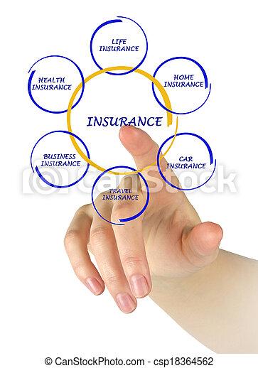 Mujer presentando el diagrama del seguro - csp18364562