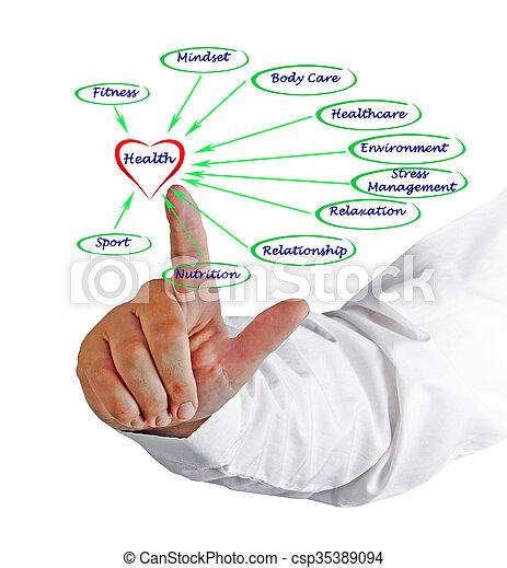Diagrama de salud - csp35389094