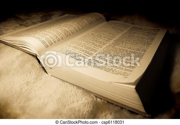 dictionary., vecchio, foto, immagine, polacco, style. - csp6118031