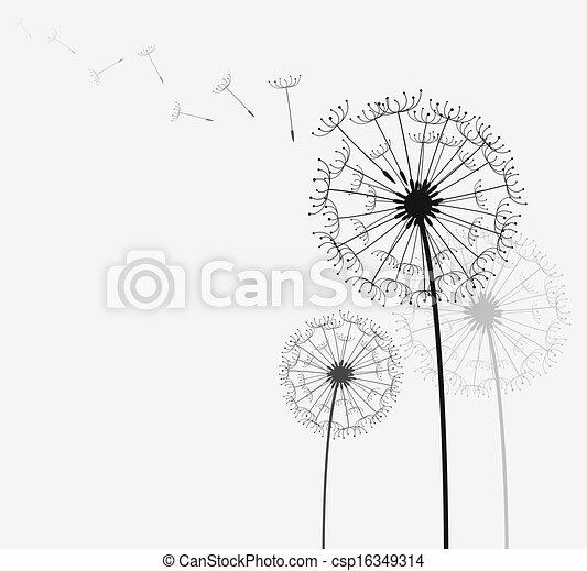 Dandelion - csp16349314