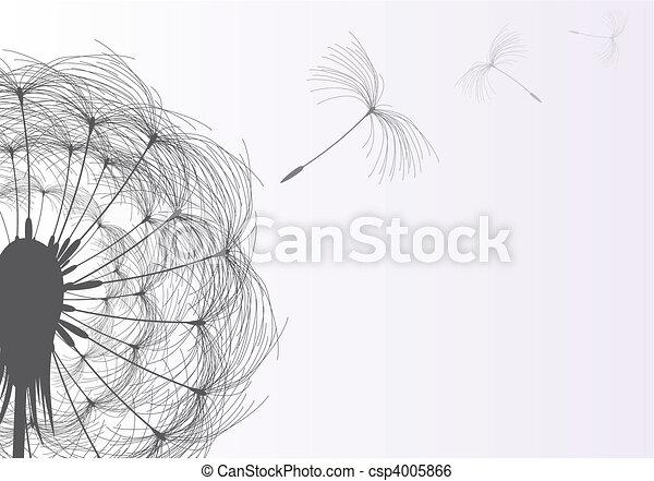Dandelion - csp4005866