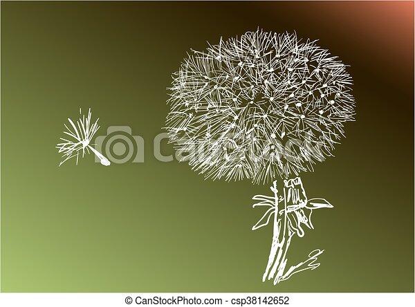 Dandelion - csp38142652