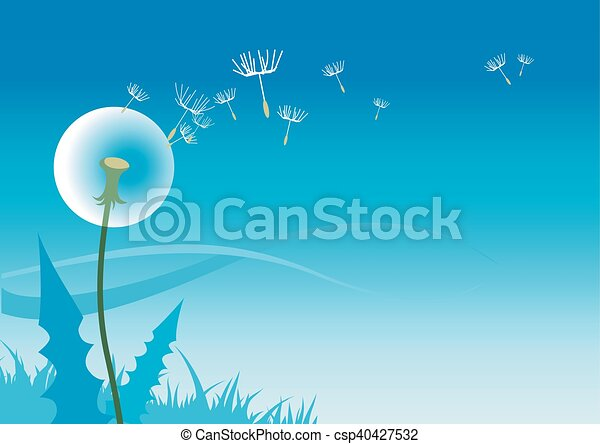 Dandelion - csp40427532