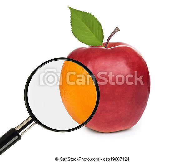 Diet concept - csp19607124