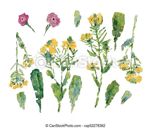 Diferente, aceite, tallos, flowers:, hojas, conjunto, flores ...