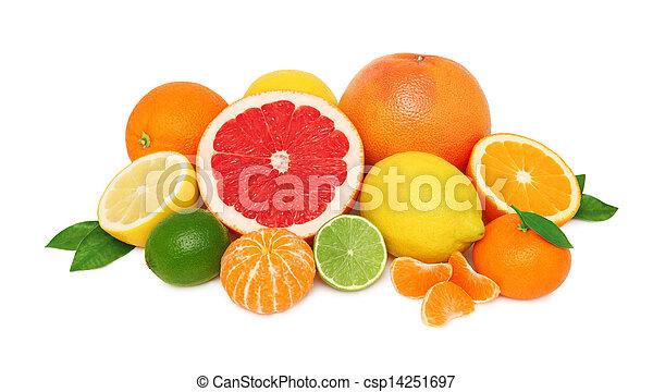 diferente, cítrico, pilha, fundo, frutas, branca - csp14251697