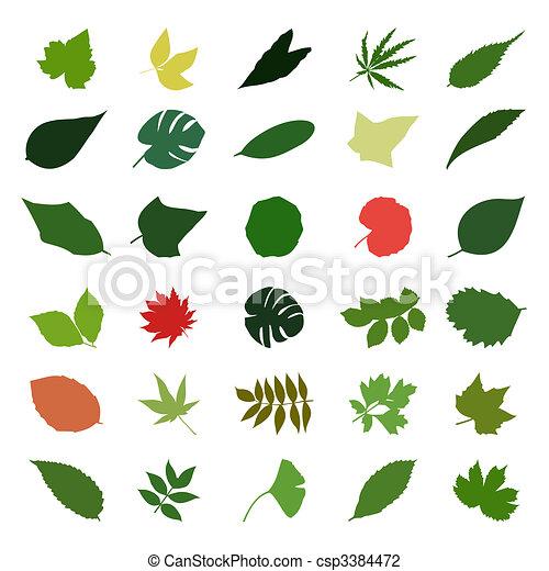 Diferente Hoja Colour Ilustración Vector árboles