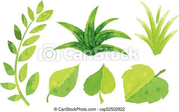 Diferente, hojas, acuarela, verde, pintura, tipos. Diferente, hojas ...