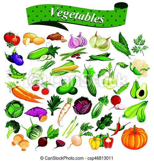 Una Colección Completa De Diferentes Tipos De Vegetales Frescos Y Saludables Ilustración De Una Colección Completa De Canstock