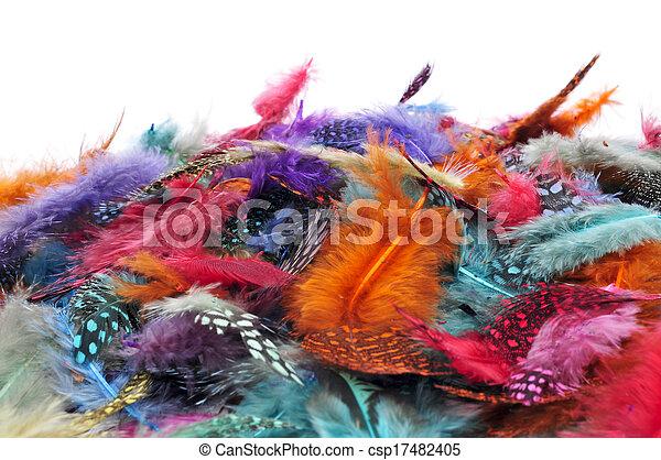 Diferente, plumas, colores. Diferente, algunos, plumas ...