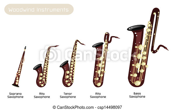 different kind of musical saxophone on white background vector