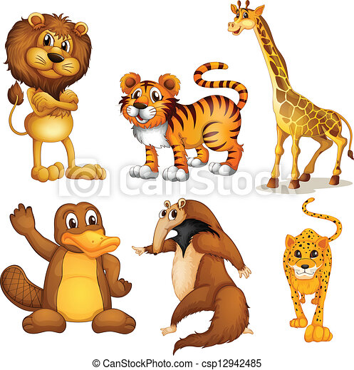 Different kinds of land animals - csp12942485