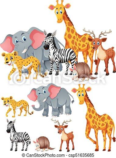 Different kinds of wild animals illustration.
