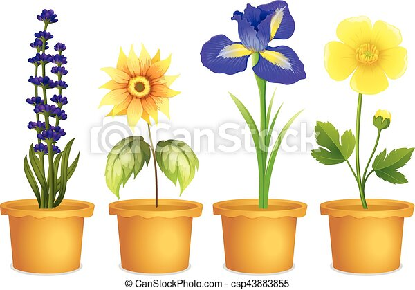 Different Types Of Flowers In Pots  sc 1 st  Can Stock Photo & Different types of flowers in pots illustration.