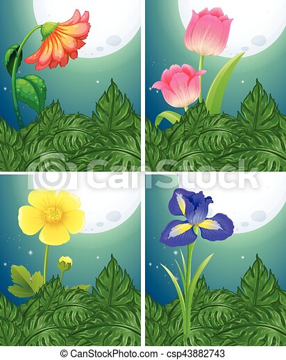 Different types of flowers on fullmoon night illustration different types of flowers on fullmoon night csp43882743 mightylinksfo