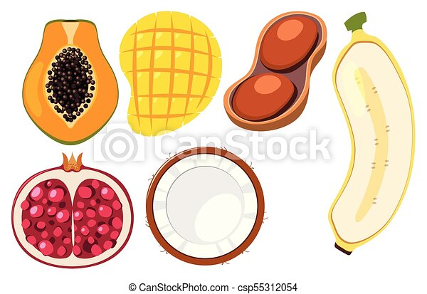 different types of fruits cut in half illustration