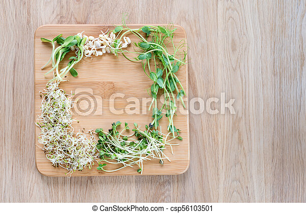 Different Types Of Micro Greens On Wooden Background Fresh Stock