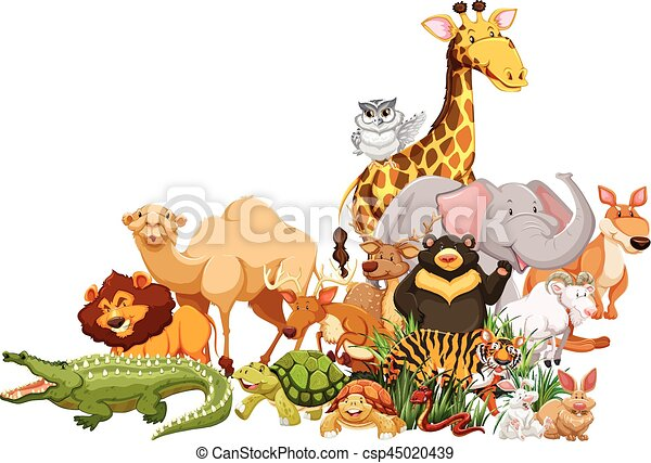 Zoo Animals Together Clipart Different types of wil...