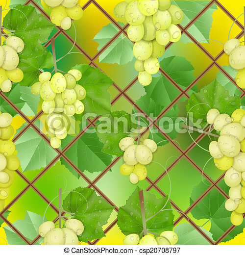 different varieties of grapes - csp20708797
